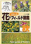 花のフィールド図鑑秋