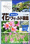 花のフィールド図鑑夏